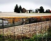 Lomography Fence